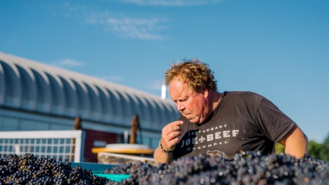 Norman Haris Making Great Canadian Wines